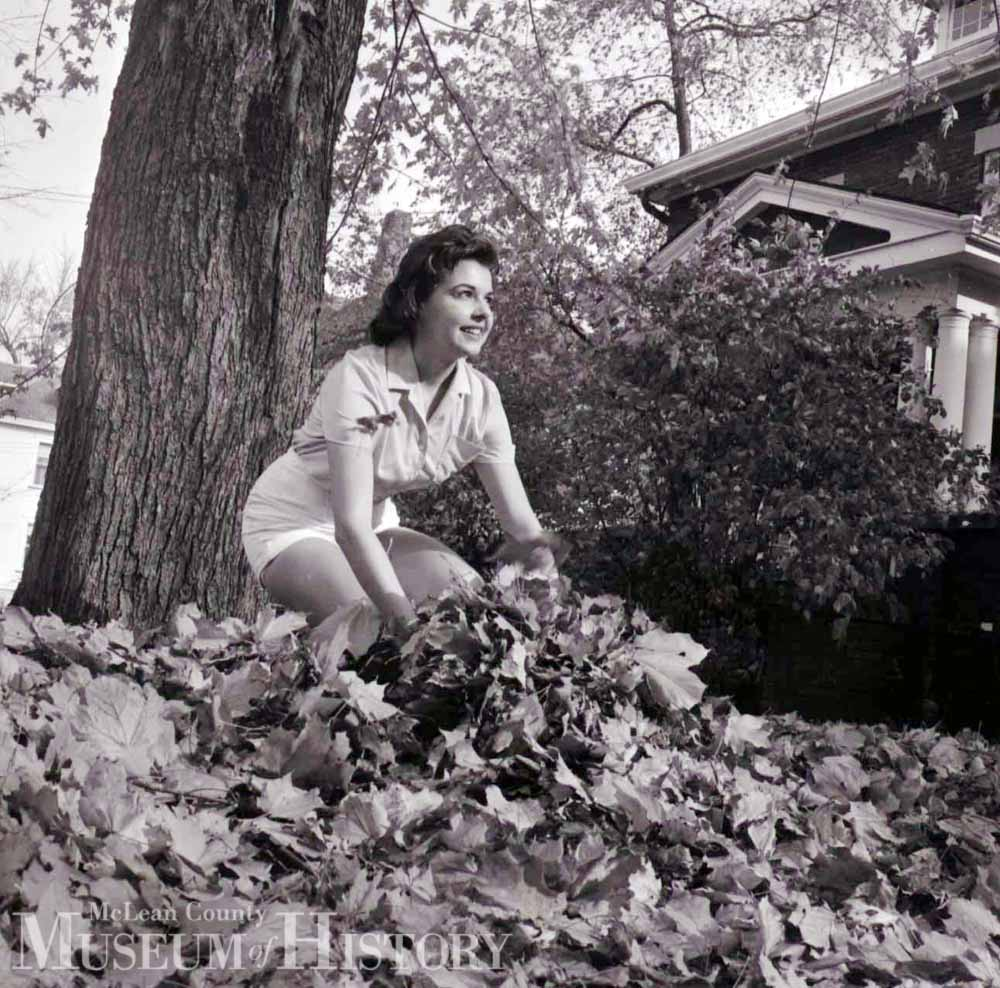 Fall leaves, 1961.