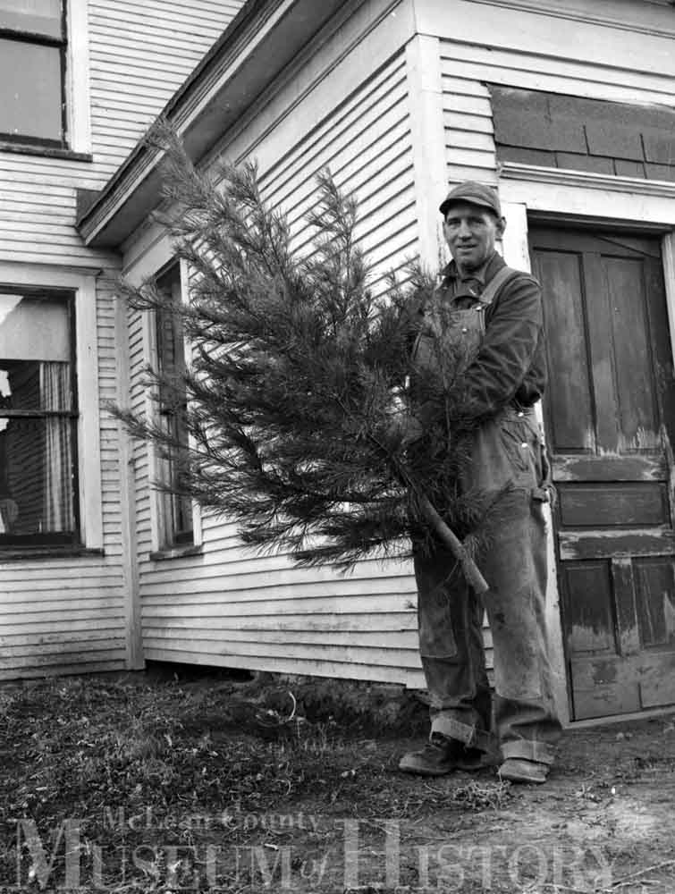 Herman Jack holding young Christmas tree, 1952.