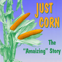 "McLean County Museum of History Past Exhibits Just Corn:  The ""Amaizing"" Story"