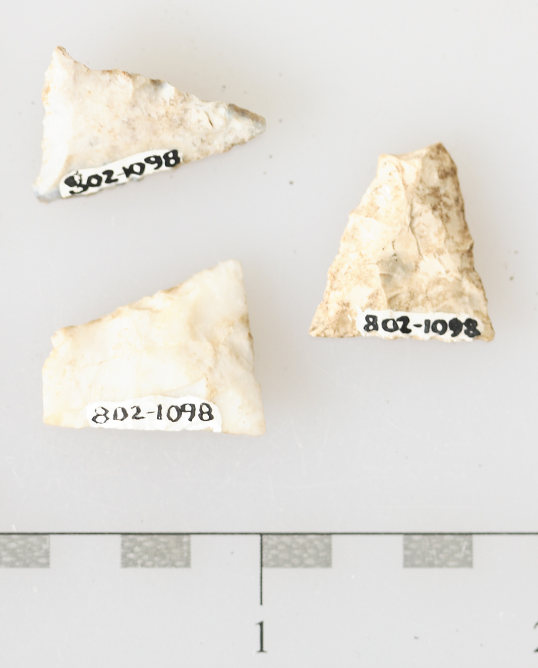 three madison points, Fox Fort Site Massacre, McLean County Museum of History Collections